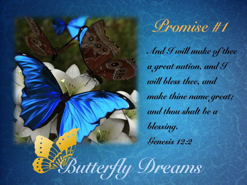 Butterfly Dreams Promise #1
