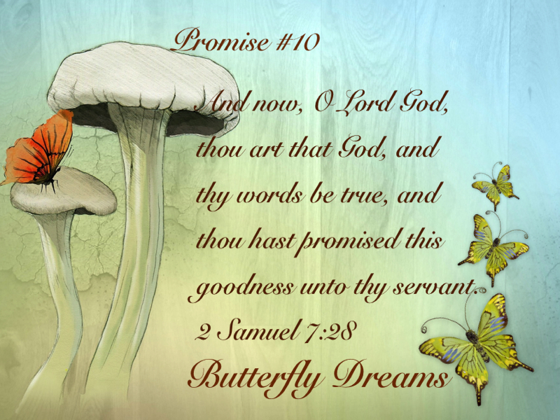 Butterfly promise #10