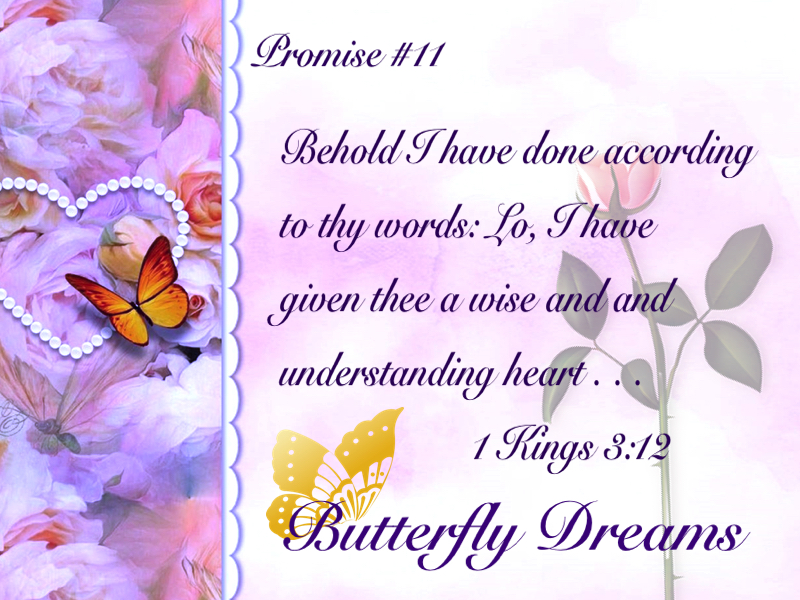 Butterfly promise #11