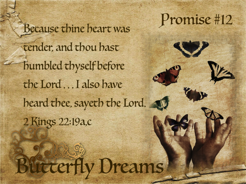 Butterfly promise #12