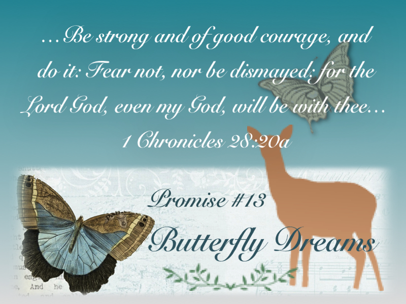 Butterfly promise #13