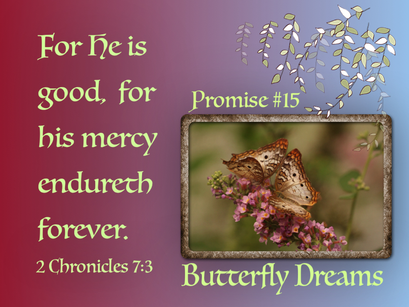 Butterfly promise #15