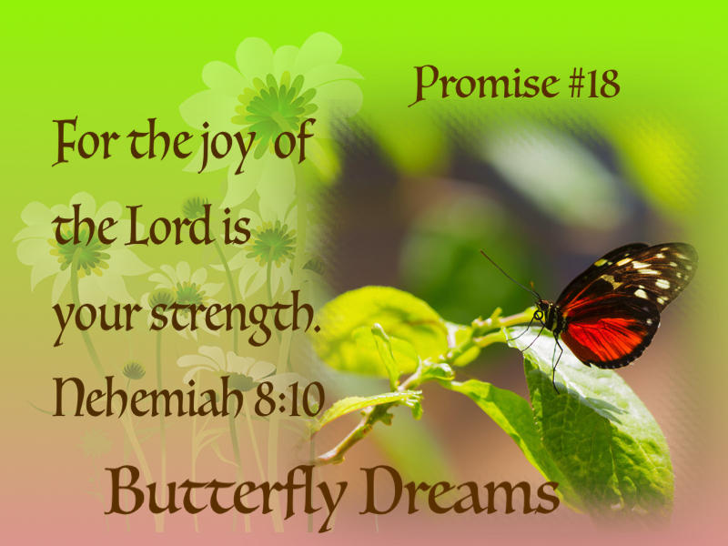 Butterfly promise #18