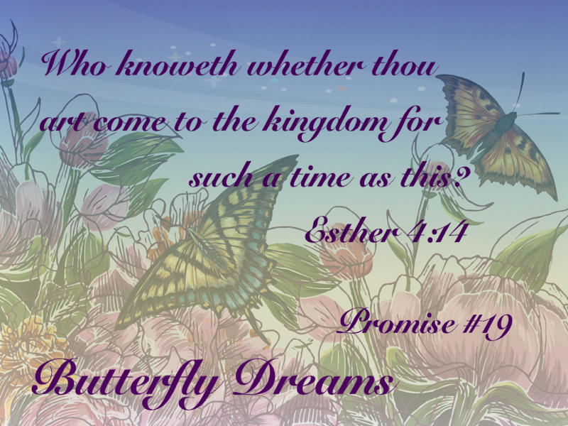 Butterfly promise #19