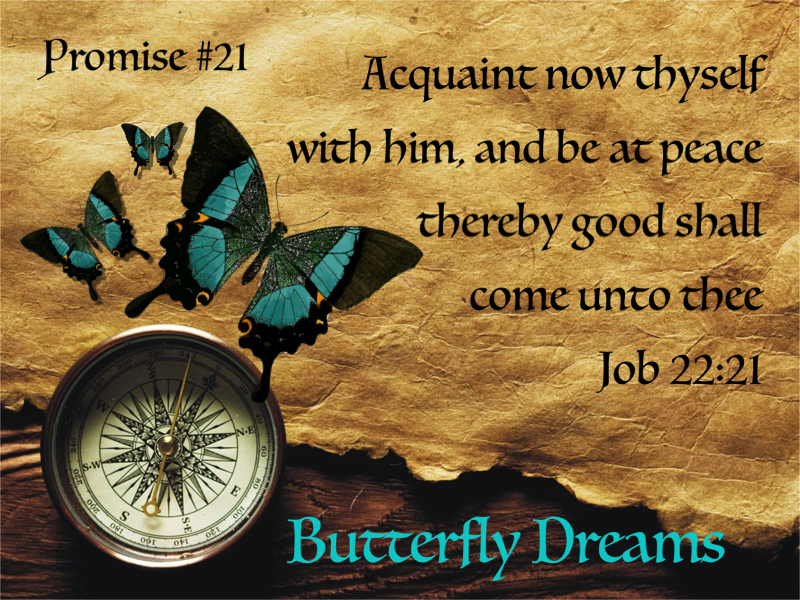 Butterfly Promise #21