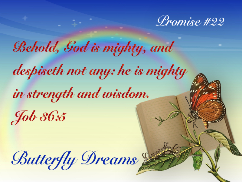 Butterfly promise #22