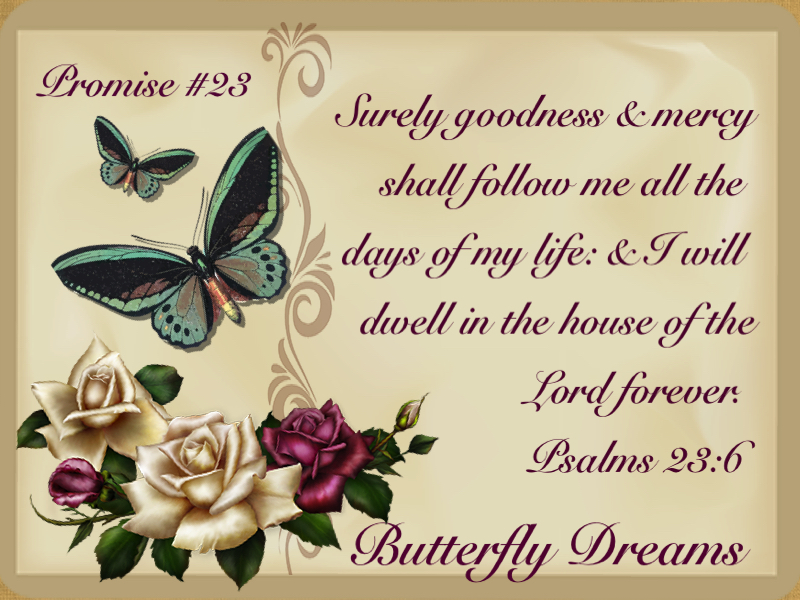 Butterfly promise #23