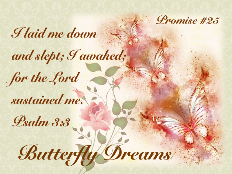 Butterfly promise #25
