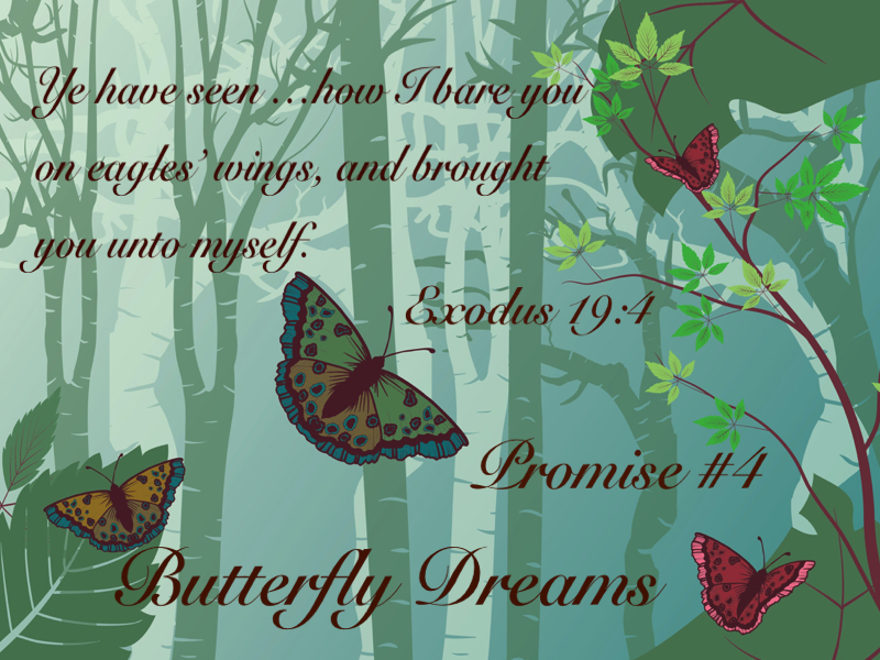 Butterfly promise #4