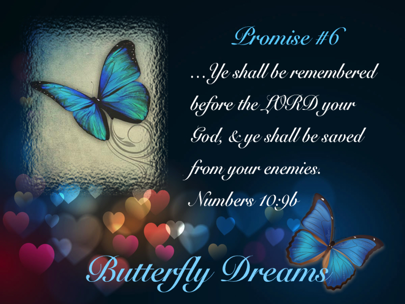 Butterfly promise #6