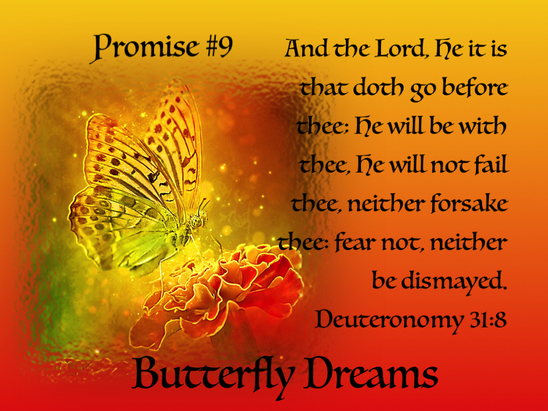 Butterfly promise #9