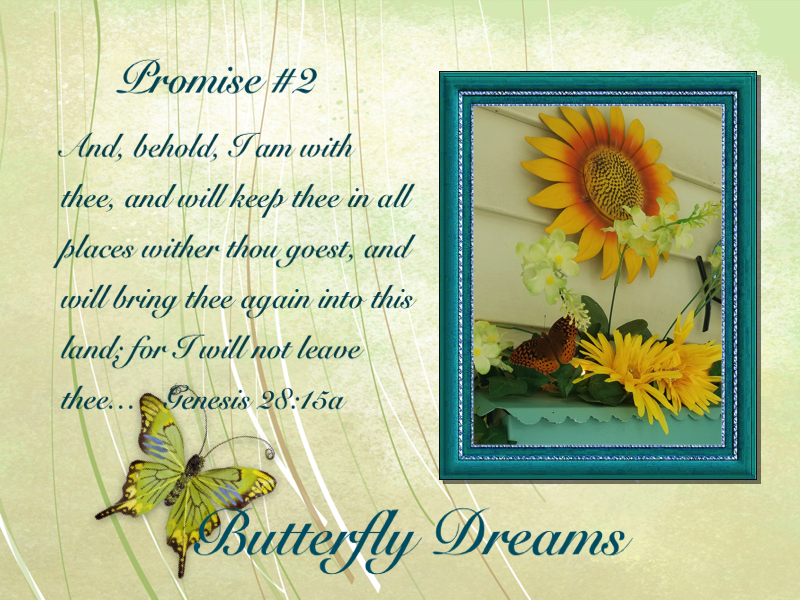 Butterfly promises #2