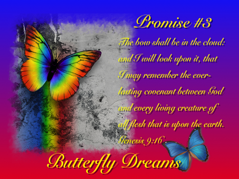 Butterfly promises #3
