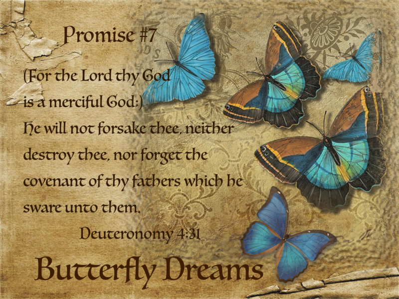 Butterfly promises #7