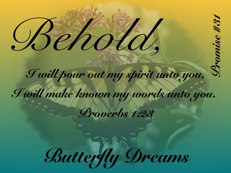Butterfly #31