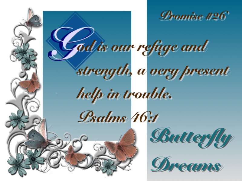 Butterfly promise #26