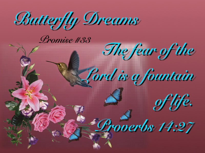 Butterfly promise #33