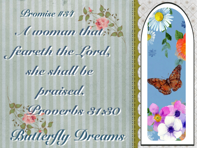 Butterfly promise #34