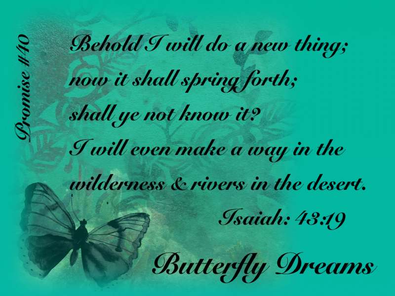 Butterfly promise #40