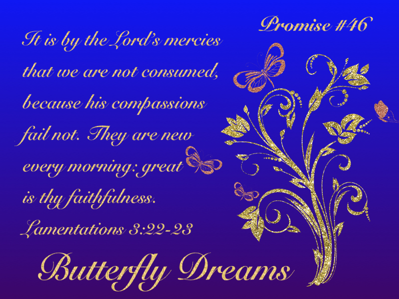 Butterfly promise #46