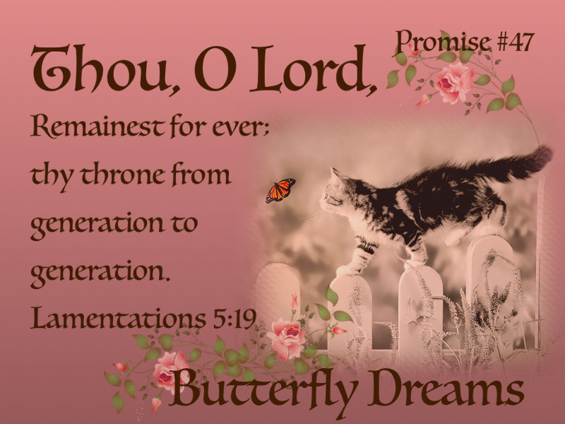 Butterfly Promise #47